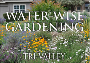 View of a front yard planted with drought friendly native plants. The words 'Water Wise Gardening' superimpose the image in white letters